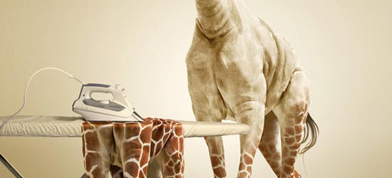 Giraffe_tutorial_3
