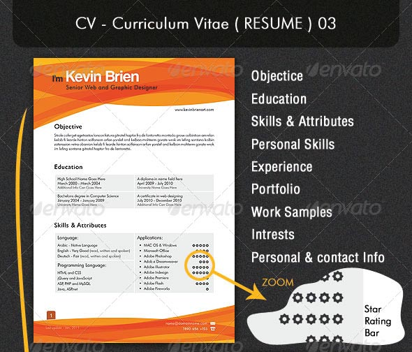 premium-resume-3