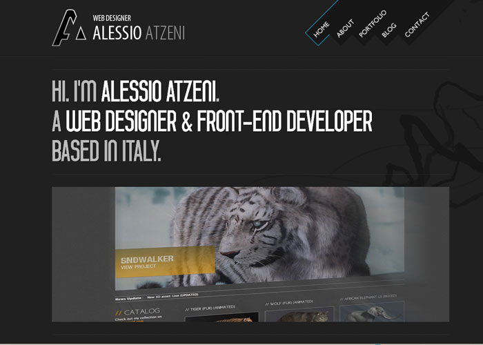 web_designer_developer_portfolio_6