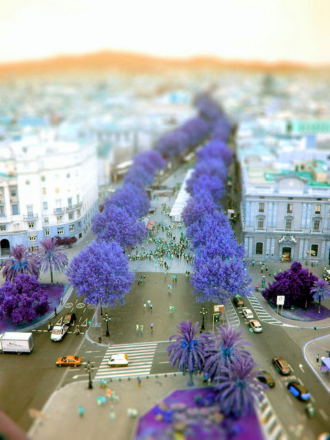fake-tilt-shift-photo-15