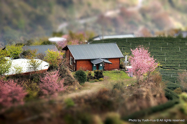 fake-tilt-shift-photo-17