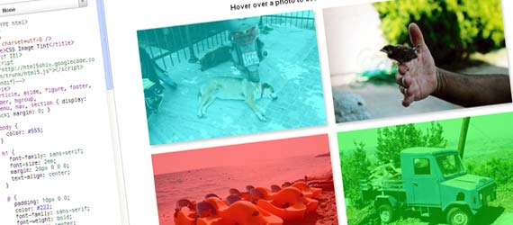 10 Image Hover Effect Tutorials Using jQuery CSS & HTML5