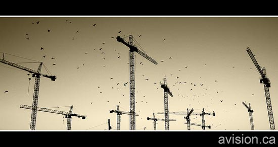 Expensive Air (Crows and Cranes) by a.Vision