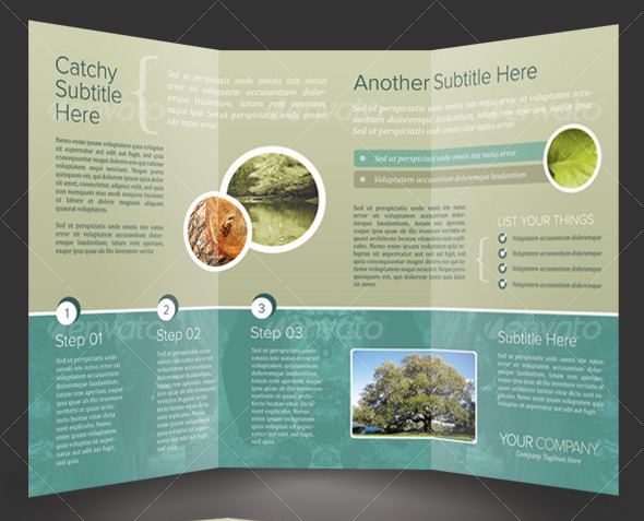 tri fold brochure design ideas - 50 business brochure templates template idesignow