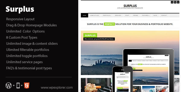 Surplus - Minimal Responsive Business WP Theme