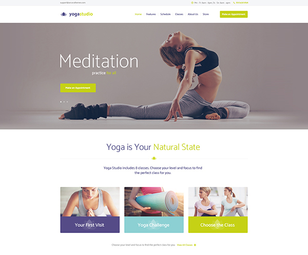 Yogastudio, Gym and Healthcare WP Theme