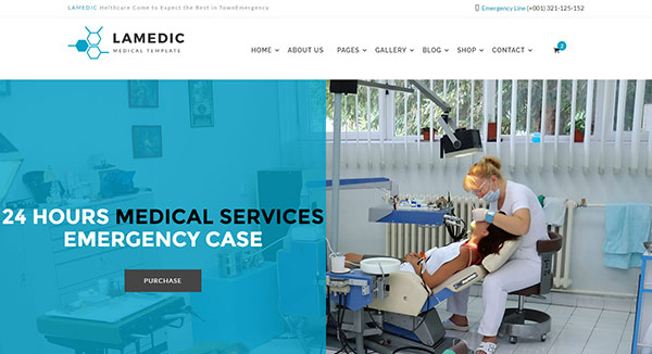 Lamadic - Health & Medical HTML Template