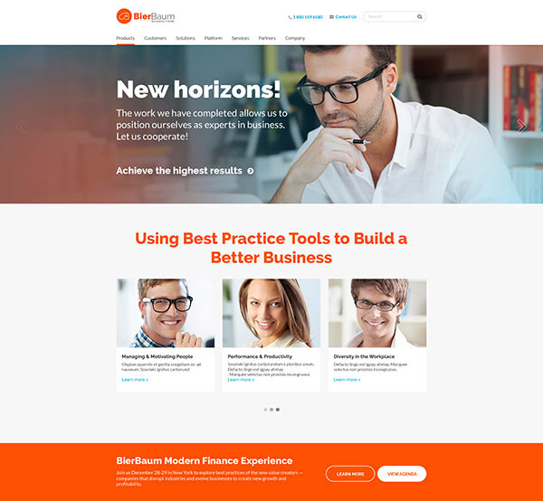 Bierbaum - Business Consulting Agency Theme