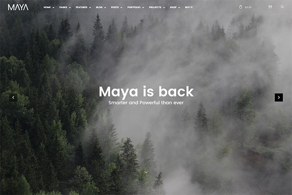 Maya - Smart and Powerful WP Theme