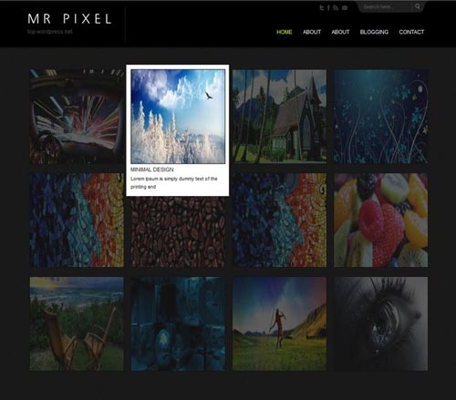 portfolio-wordpress-theme-idsn-31