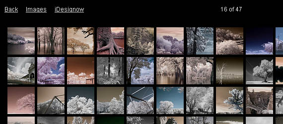 jquery-flickr-7