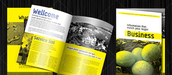 30 Corporate Business Brochure Templates