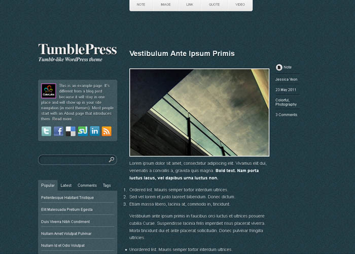 tumblepress_wordpress_tumblr_theme_3