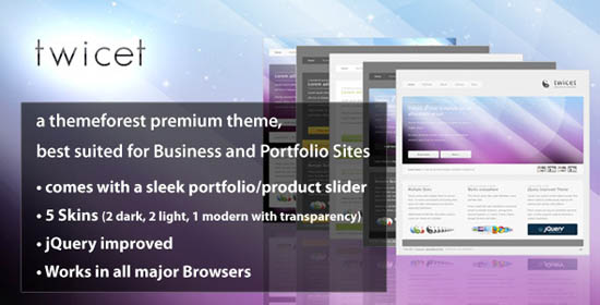 Twicet Business & Portfolio Template - 5 in 1_8