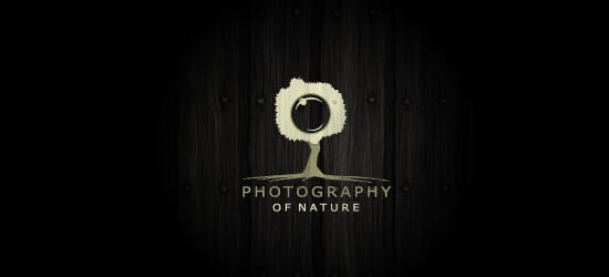 photography logo design_17