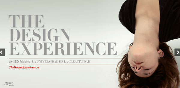 The Design Experience