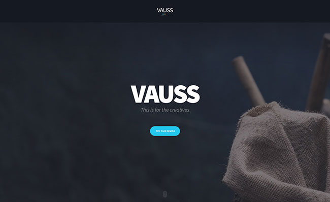 VAUSS /// Multipurpose Creative Template with Page builder