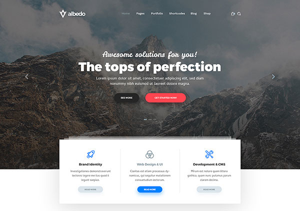 Albedo - Universal and Multipurpose Soft Material PSD Template