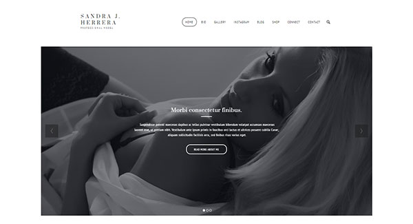 Modish - Fashion Model WordPress Theme